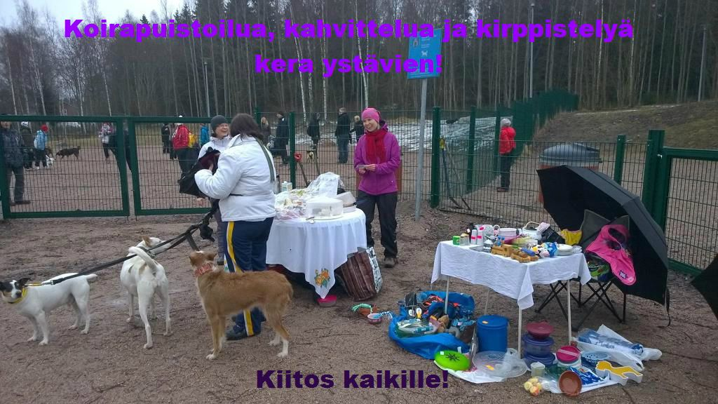 Rescuevaen_koirapuistoilua_23-3-2014_kotisivuille
