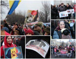 Tunnelmia mielenosoituksesta Romaniassa, johon Kulkureiden Salla, Taija ja Sini osallistuivat.