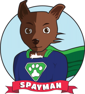 Spayman_transparent