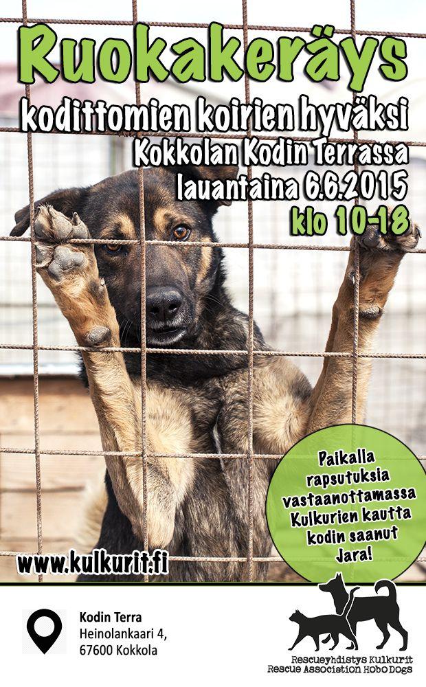kokkola_ruokakerays_kesakuu2015_web