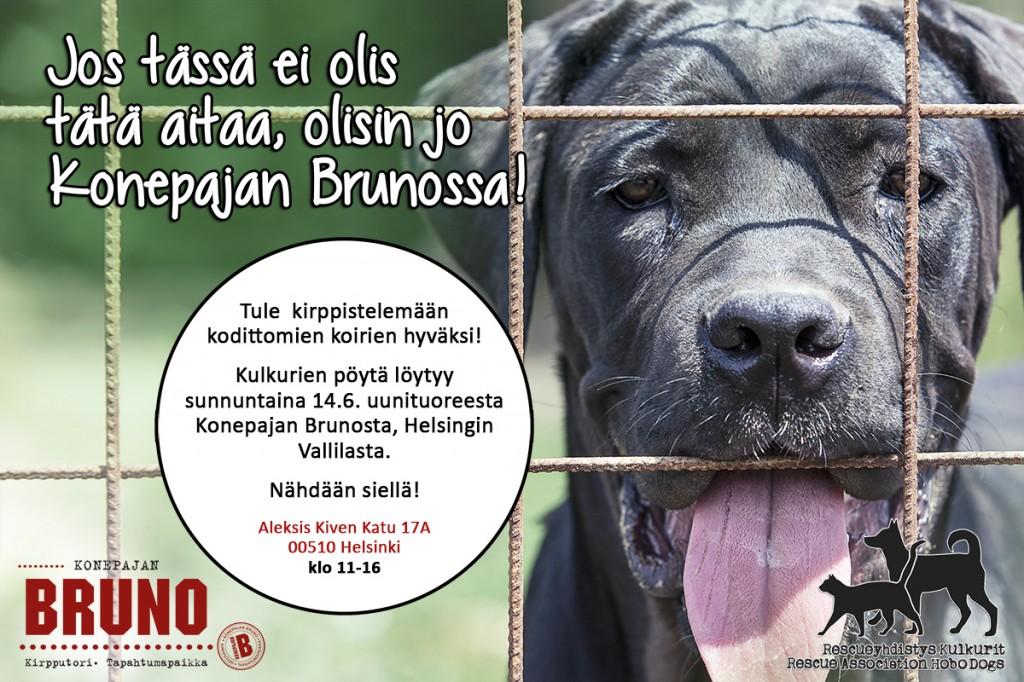 kulkurit_bruno