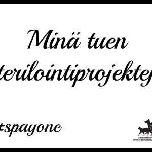 spayone_poster4