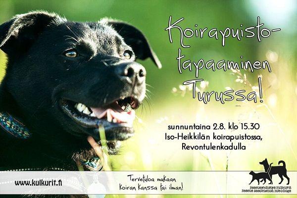 Tervetuloa koirapuistoilemaan Turkuun 2.8.2015!