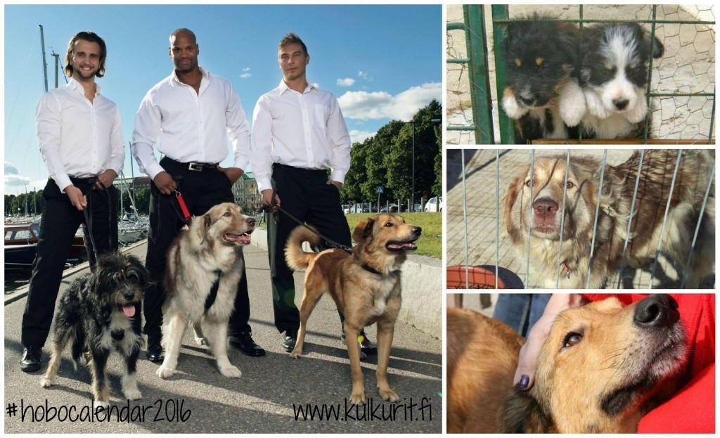 Kuva vasemmalla: Petteri Peltonen Photography