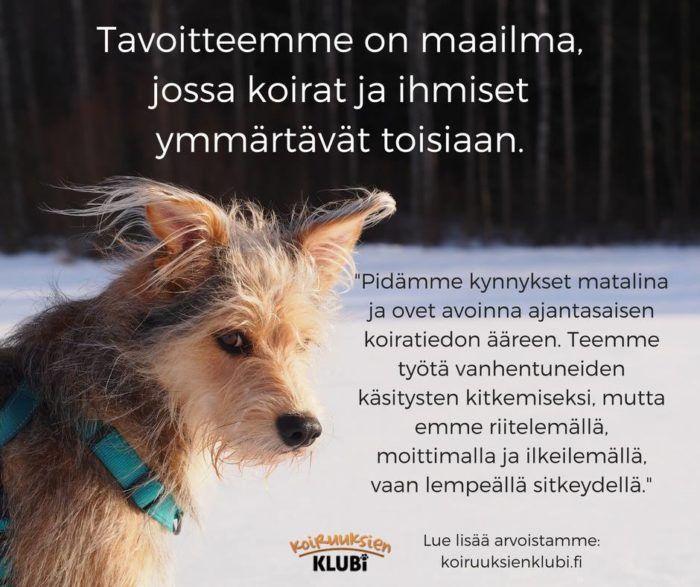 koiruuksien_klubi_tavoite