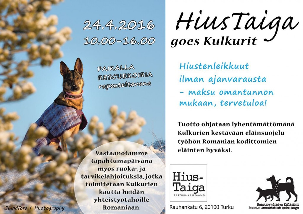 hiustaiga_goes_kulkurit_4_web