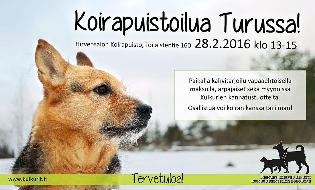 koirapuistoilu_turku_helmi_2016