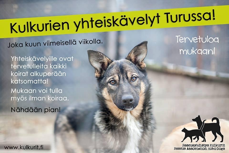 turku_yhteislenkki_II