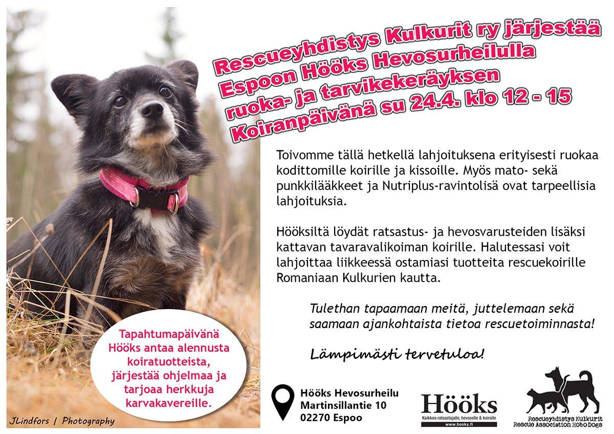 koirapaiva_hooks_huhti16_netti