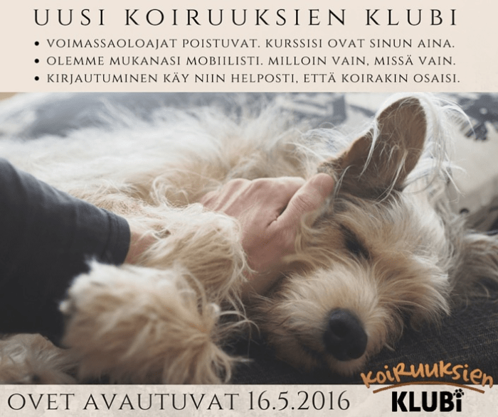 Uusi_koiruuksien_klubi