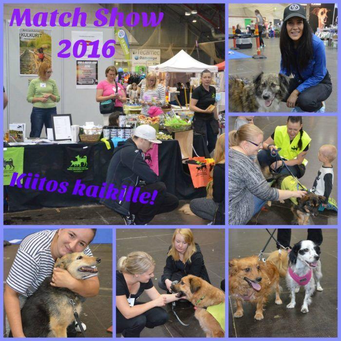 kiitos_match_show_2016