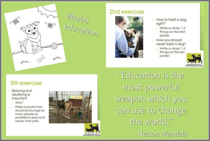 hobo_education
