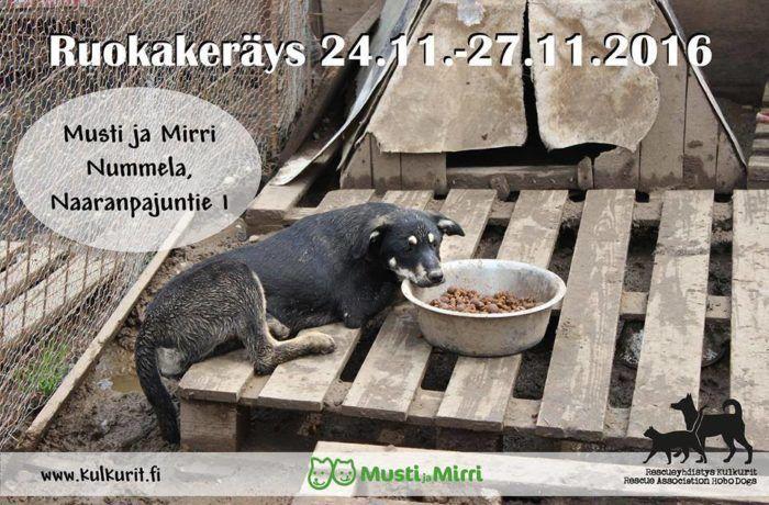 ruokakerays-nummela-marraskuu-2016