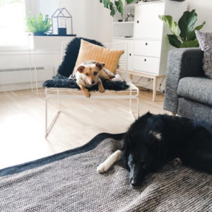 6_Linus kotona maaliskuussa 2019