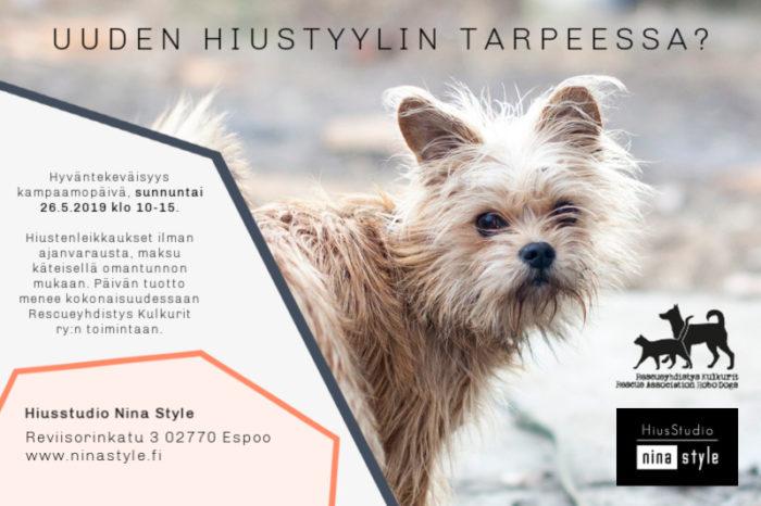 Hiukset kuntoon Nina Stylen hyväntekeväisyyspäivässä toukokuussa. Kuvassa rescuekoira.