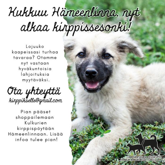 Kirppistelyä Hämeenlinnassa - lahjoituksia kaivataan! Kuvassa rescuekoira.