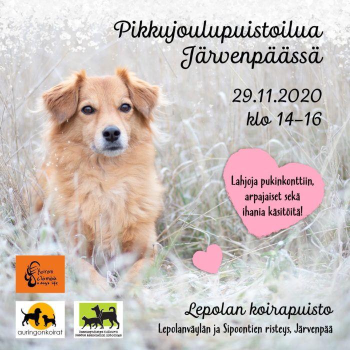 Flyeri koirapuistoilusta Järvenpäässä. Flyerin sisältö avataan tarkemmin leipätekstissä.