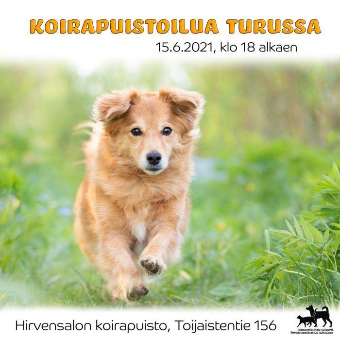 Koira juoksee nurmikolla. Flyerin tiedot avataan tarkemmin tekstissä.
