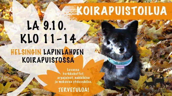 Koirapuistoilua Helsingissä -tapahtuman flyeri. Flyerin sisältö avataan leipäteksissä.